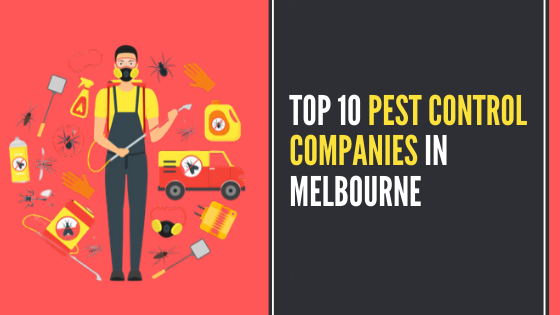 Top 10 Pest Control Companies In Melbourne
