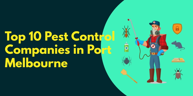 Top 10 Pest Control Companies in Port Melbourne