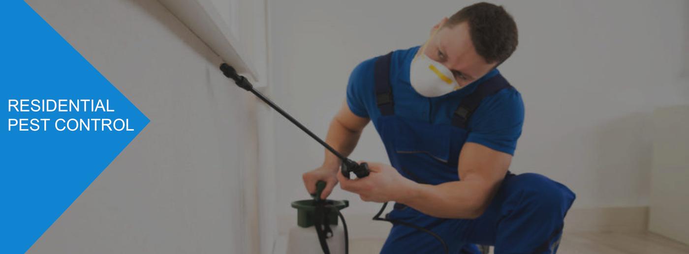 pest-control-services-melbourne