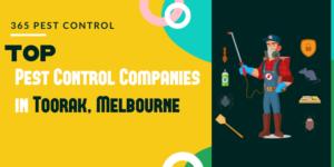 Top 10 Pest Control Companies in Toorak