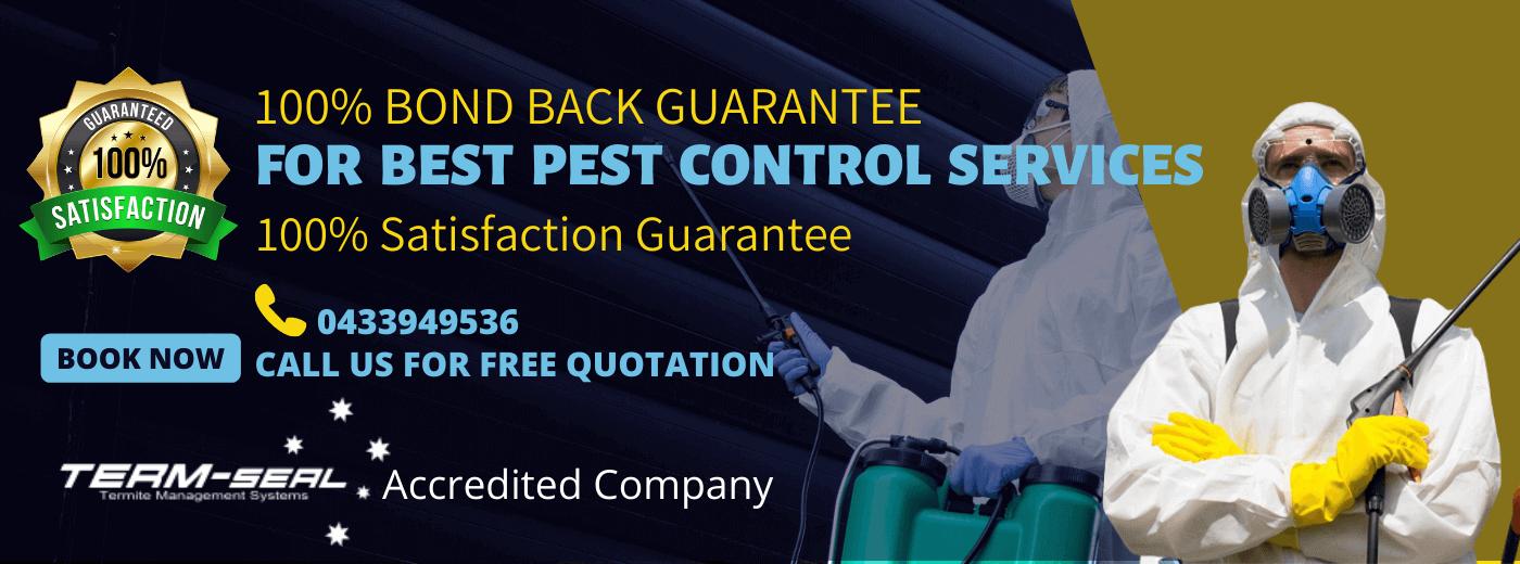 pest-control-melbourne